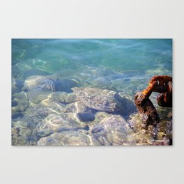 Hawaiian Harbor Waters Canvas Print