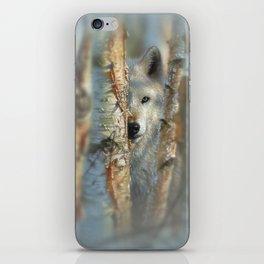 White Wolf - Focused iPhone Skin