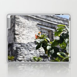 Touch of color in Tulum Laptop & iPad Skin