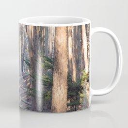 Andy Goldsworthy Wood Line, San Francisco Photography, California Fine Art, Woodland, Enchanted Forest Home Decor Coffee Mug