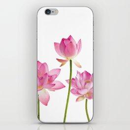 Lotos Waterlilies Flowes pink iPhone Skin