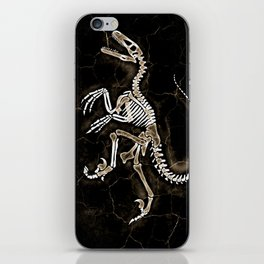Dino Fossil 2 iPhone Skin