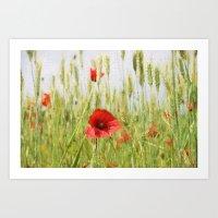 Poppies In The Fields. Art Print