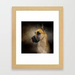 Dashing Great Dane Framed Art Print