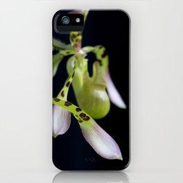 Jus' Hangin' Around iPhone Case