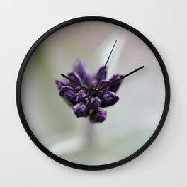 Dame's Rocket Buds Wall Clock