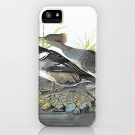 Hooded Merganser - John James Audubon iPhone Case