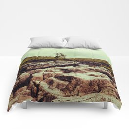 SCOTLAND / Glen Etive, Highlands / 02 Comforters