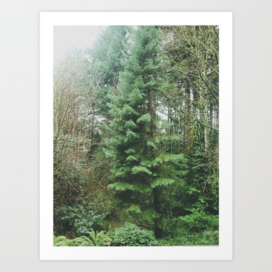 With the Trees Art Print
