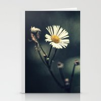 daisy Stationery Cards featuring Daisy by Pascal Deckarm Fine Art