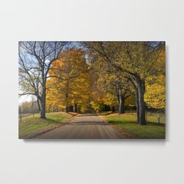 Rural Country Gravel Road in Autumn Metal Print