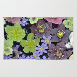 Colorful hellebore flowers Rug