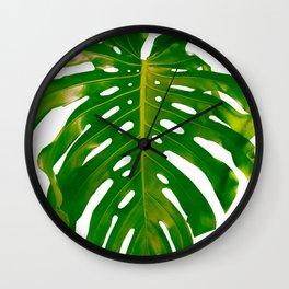 Guatemala - Monstera Deliciosa Leaf Wall Clock