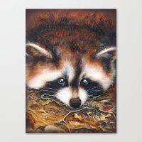 raccoon Canvas Prints featuring Raccoon by Patrizia Ambrosini