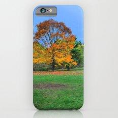 Autumn Upon Us iPhone 6s Slim Case