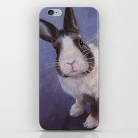 furry iPhone & iPod Skins featuring Furry Friend by Ashley Vanchu