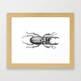 Vintage Beetle black and white Framed Art Print