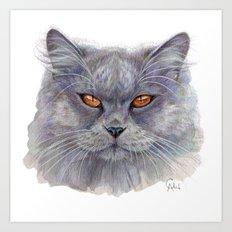 Grey Cat CC1401 Art Print