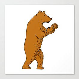 Brown Bear Boxing Stance Drawing Canvas Print
