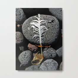 Feather and Kelp Metal Print