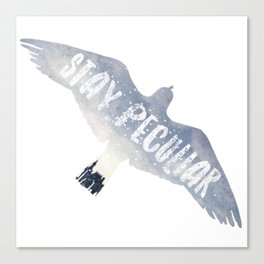 stay peculiar - miss peregrines Canvas Print