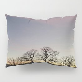 Autumn Sunset Silhouette - Pheasant Branch Conservancy Pillow Sham