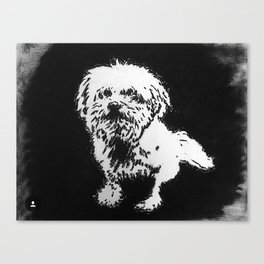 Wiley Canvas Print