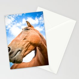 Portrait of an English horse  Stationery Cards