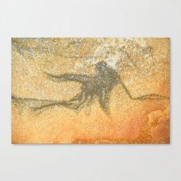 Natures Rock Art 1 Canvas Print