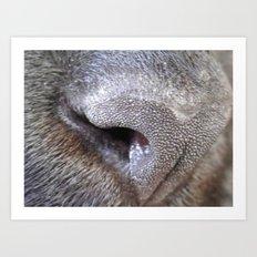 nose Art Print