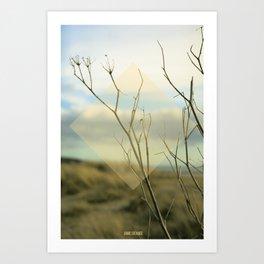 Summer 02 Art Print