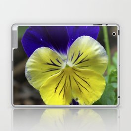 Vivid Viola Laptop & iPad Skin