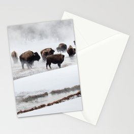 Yellowstone National Park - Bison Herd Stationery Cards