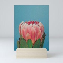 Protea Mini Art Print
