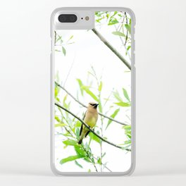 Cedar Waxwing Clear iPhone Case