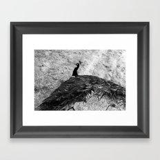 Show Off BW Framed Art Print