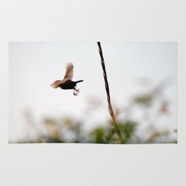 Wren Songbird Bird on Rusty Wire (Troglodytes) Rug