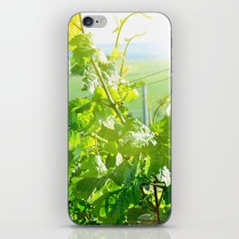 Vineyard iPhone Skin