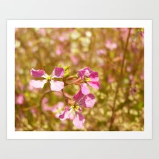 Fort Brag Flowers V Art Print