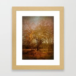 Golden November Framed Art Print