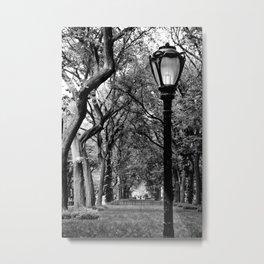 Central Park in June Metal Print