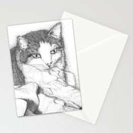 House Cat Stationery Cards