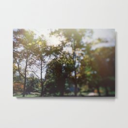 Central Park in Altered State Metal Print