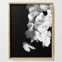 White Orchids Black Background Serving Tray