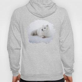 White snow arctic fox Hoody