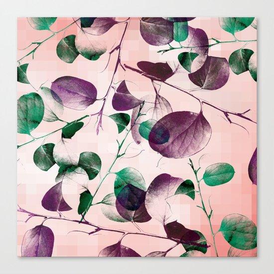 Spiral Eucalyptus Leaves Canvas Print