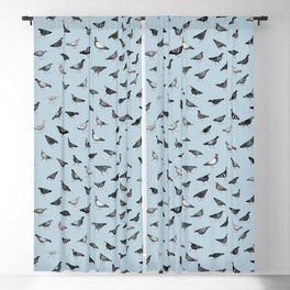 Pigeons Doing Pigeon Things Blackout Curtain