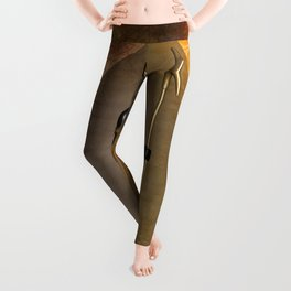 Anubis the egyptian god Leggings