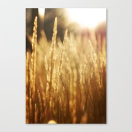 Morning Fields Vertical Canvas Print