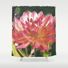 Glow - Dahlia Shower Curtain